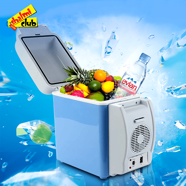 Portable Electronic 6l Cooling Amp Warming Refrigerator