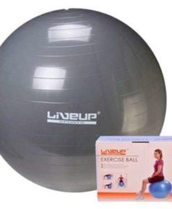 Buy Best Quality Anti Burst gym ball by shopse.pk best price in Pakistan