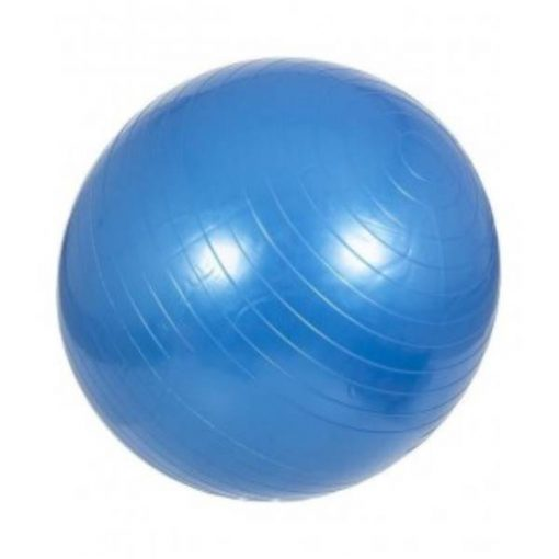 Buy Anti-burst Gym Ball 100 cm blue at best price online by Shopse.pk in pakistan