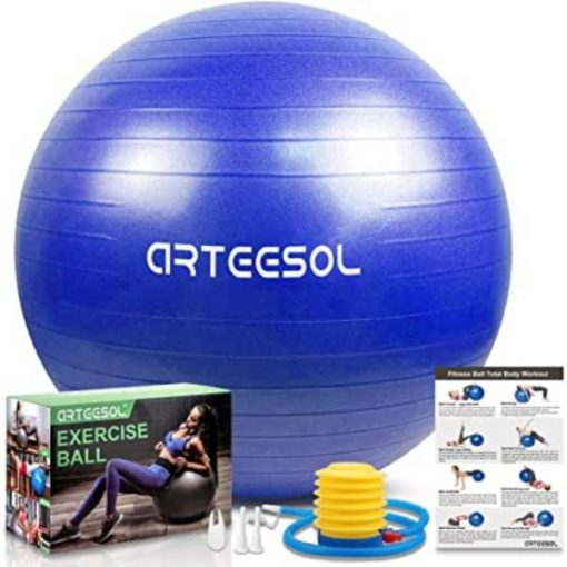 Buy Gym Yoga Ball with Hand Pump Gym Quality Fitness Ball at best price online by Shopse.pk in pakistan (2)