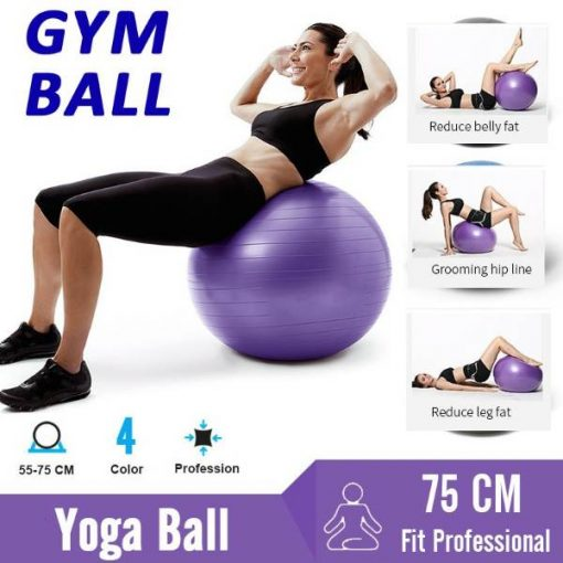 Buy Gym Yoga Ball with Hand Pump Gym Quality Fitness Ball at best price online by Shopse.pk in pakistan